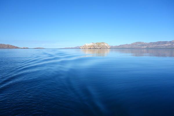 Baja Sea of Cortez Bahia Concepcion
