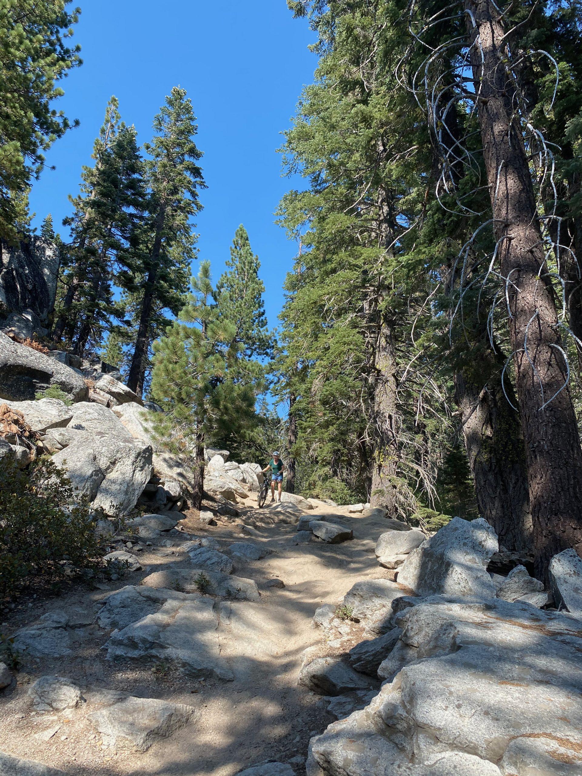 Mountain Biking North Lake Tahoe