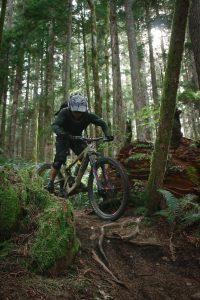 mountain biking santa cruz
